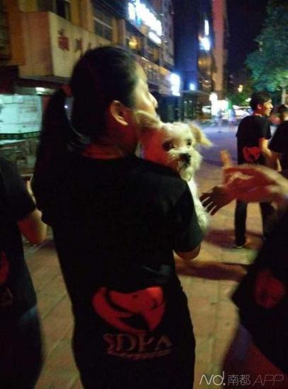 义工把狗狗接走。
