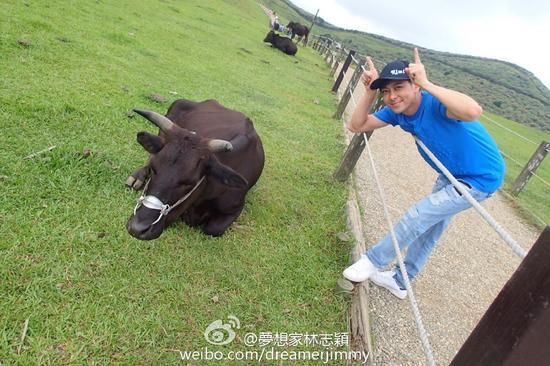 林志颖模仿牛