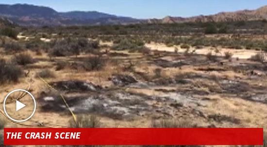 飞机坠毁现场(图片来自TMZ)