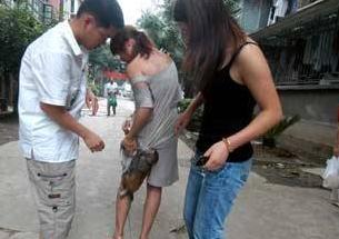 猴子抱住美女大腿乞讨