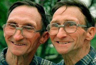 双胞胎研究揭示10个真相:社交能力取决于基因