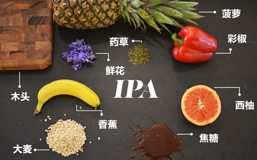 IPA香气特点是种类多,层次明显