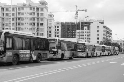 停在路边的公交车