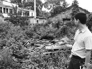 王家老宅的废墟上堆满了碎瓦断木,杂草丛生