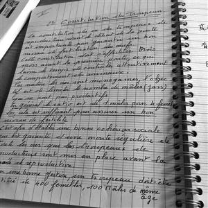 皮埃尔的笔记