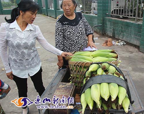 熊婆婆在卖甜玉米