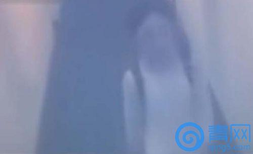 酒店监控拍摄肖璨的最后画面。