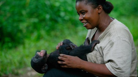 和人类似,猩猩喜欢挠痒