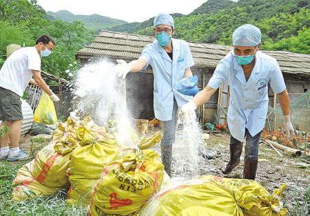 灾后防疫忙 昨天上午,在宁海县大佳何镇团联村,镇卫生防疫人员正在帮助养鸡专业户葛万娟,将被洪水淹死的3000多只鸡在第一时间进行防疫处理。(严龙 庞金杰 摄)