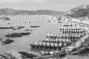 昨日,台风过后的石浦港恢复往日景象。