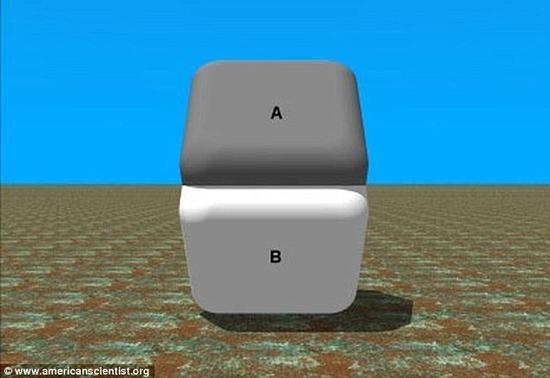 在本图中,两个方块颜色似乎不同,但如果用手指将两个方块中间的连接处遮挡掉,你就会发现它们的颜色其实是一样的。
