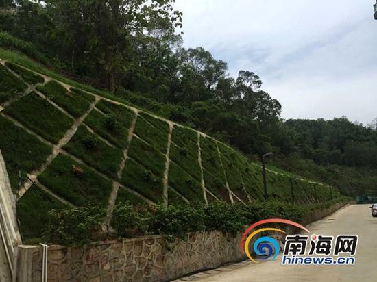 鹿港溪山已做好的防护坡(三亚新闻网记者 刘丽萍摄)