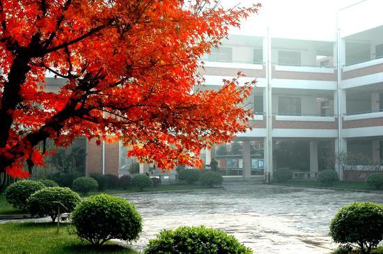 家门口的好学校:南京市建邺高级中学学校第二录取批次万州高中图片