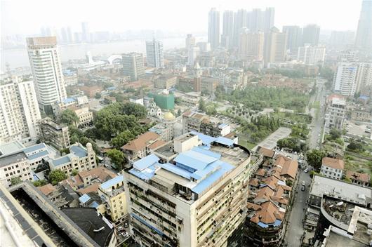 武汉一违建鸽舍占满楼顶不好拆 数百只信鸽价值千万