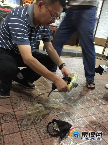周先生拿着绑住李明手脚的绳子和胶带,介绍情况。(南海网记者李晓梅摄)