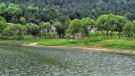 构溪河国家湿地公园跻身四川最具潜力森林康养目的地