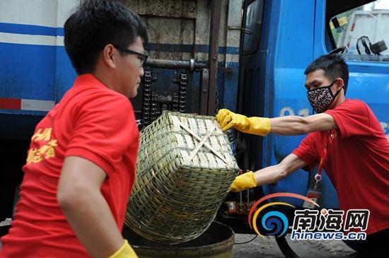 志愿者清理东湖死鱼(南海网记者马伟元摄)