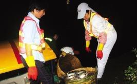 工人通宵捞鱼