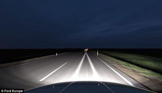 """""""基于相机的先进前照灯系统""""探测到路面上出现一只鹿,聚光灯向目标投射明亮的光柱。"""