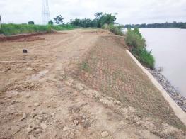 河堤上重新种上草皮