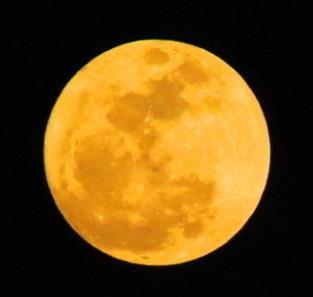 月上中天时,月亮呈黄色