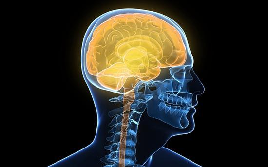 七大影响智力生活方式:大量食用高脂肪损伤大脑