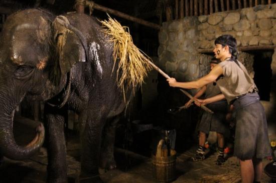于小彤给大象沐浴