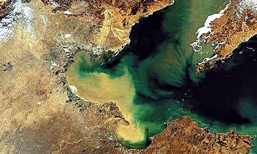 秦皇岛市海洋局海洋环境保护科科长董自若说,科里有6个人,3人在编.