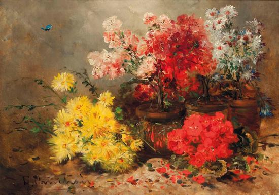 柯什瓦-雏菊、万寿菊、天竺葵和其他夏花