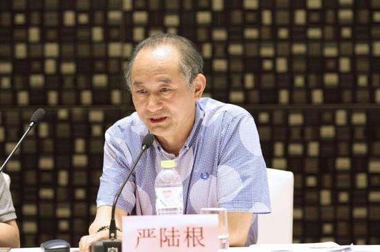 (百家湖国际文化投资集团董事长严陆根先生讲话)