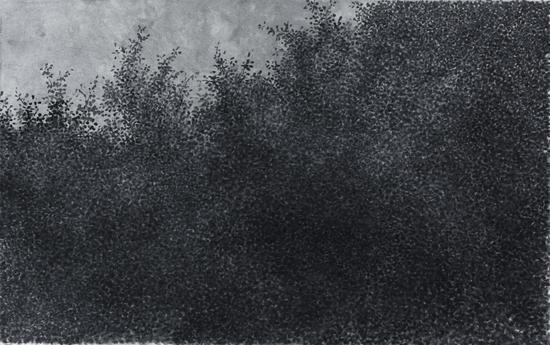 丛林No.05 37x59cm 纸本水墨 2015