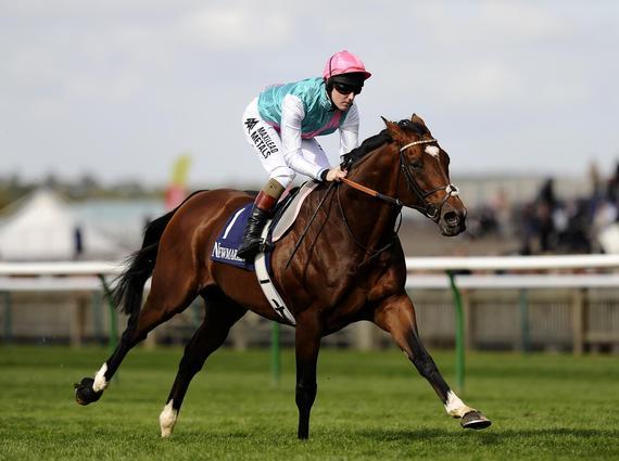 日本赛马中最有名的马