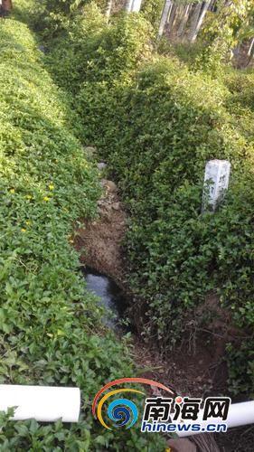 村民称收胶站的污水就是从这个小坑里排放出来。记者杨琼文摄