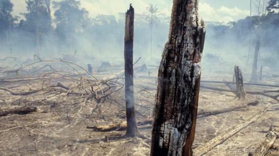 地球资源过度消耗:我们应该恢复配给制度吗?