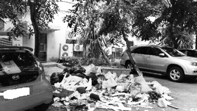 路面上的垃圾
