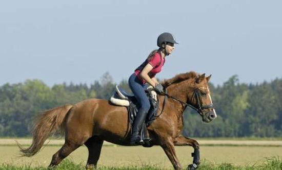 第一次放松:骑马体育很重要qq身体v体育英超直老式健美裤图片