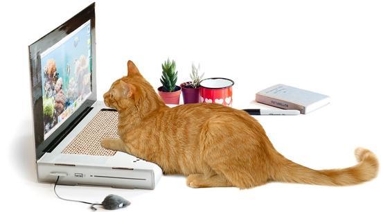 纸折猫咪步骤图解