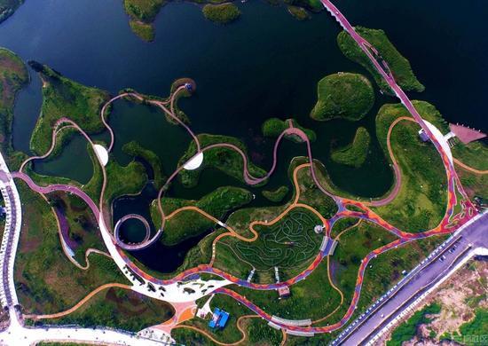 眉山湿地的曲线之美