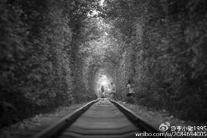 """女孩为在""""爱情隧道""""拍照两度逼停火车"""