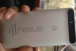 谷歌手机又有新料 华为Nexus外形曝光