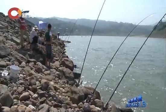 童老汉钓鱼出事水域 视频截图。