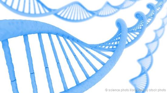 我们的DNA影响着我们的精神健康。
