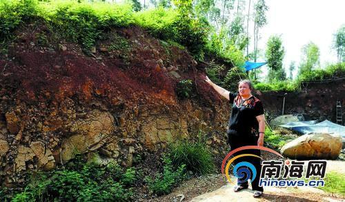 """倪女士夫家的祖坟是在缓坡上,现在旁边被挖空,已经相当处在""""悬崖""""边。"""