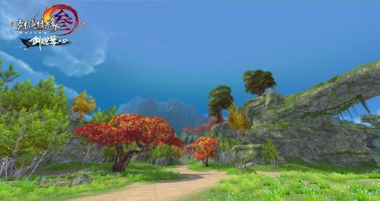 白桦树和枫树