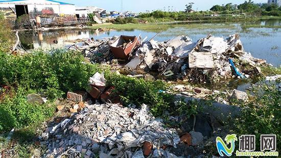 ▲新埠下村水塘里堆满垃圾