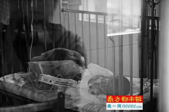 小羽目前在医院接受治疗。南都记者 梁炜培 摄