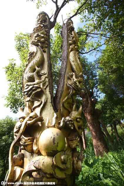 近日,浙江寧波,象山縣石浦鎮大金山的一條山路邊,一片小樹林裡十餘棵樟樹上雕刻著各式各樣的龍形圖案,表面還刷上一層金漆,顯得生氣十足。還有的樹則剝去了大半的皮,等待被雕刻。