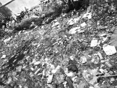 生活垃圾覆盖河面,水体散发出恶臭
