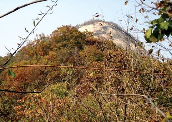 挂鼓楼山顶(图片来自甜井故地的博客)