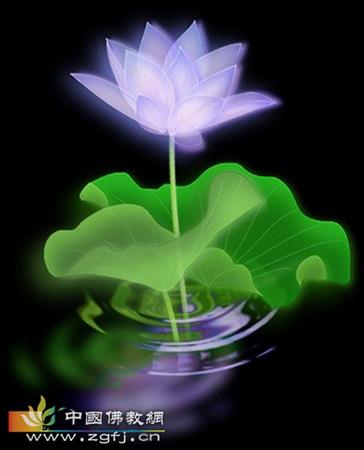 佛教对神秘感应的现象看法如何。
